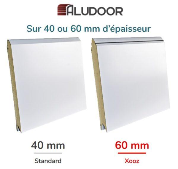 Panneau porte Aludoor 40 60